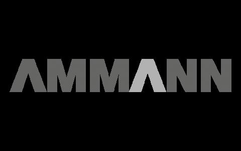 Ammann_grau_500x300px
