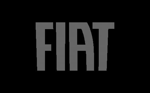 Fiat_grau_500x300px