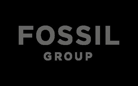Fossil_grau_500x300px